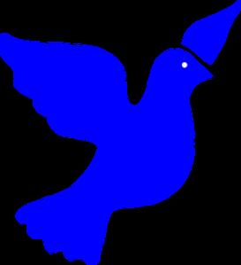 dove-158161__340