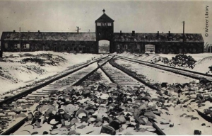 29-_gates_railway_and_tower_at_auschwitz-birkenau