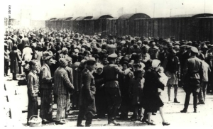 33-_arrival_and_selection_at_the_ramp_at_auschwitz